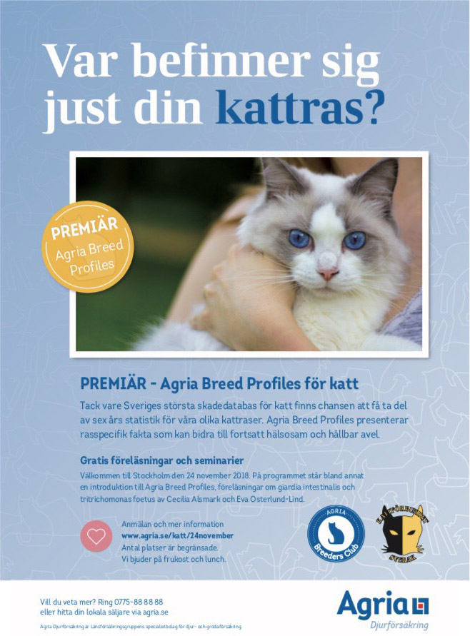 Agria Cat Breed Profile