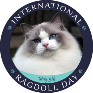 Internationella Ragdolldagen 5 maj